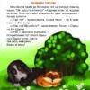 Кексик_Книга02_посторінково_Страница_19